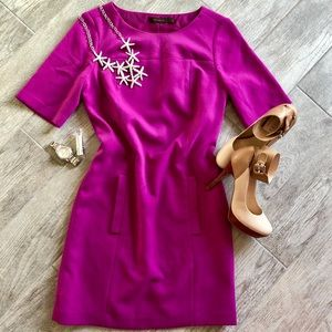 The Limited Magenta Shift Dress Size 4
